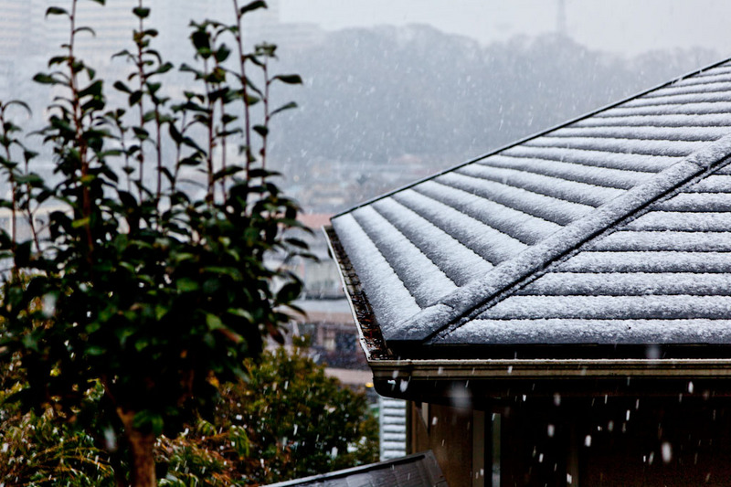 今シーズンの初雪 01.jpg